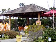 2006_1d